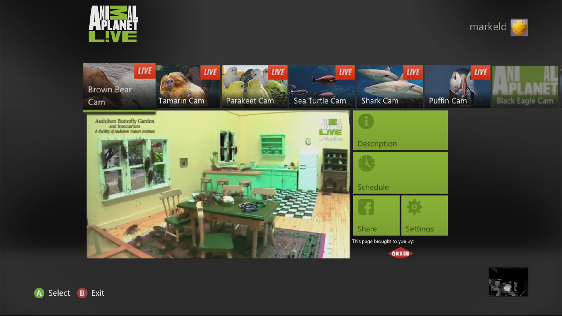 Animal Planet LIVE Xbox 360 Home screen